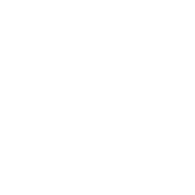 The Dalesman Logo